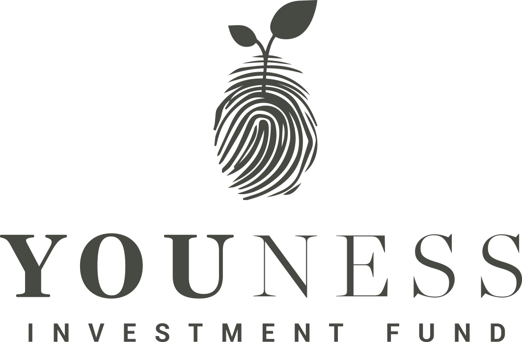 Fondul de Investiții Youness